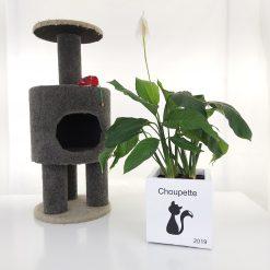 memorial for pets